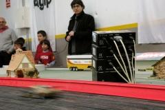Daytona2011_Carrera1_33